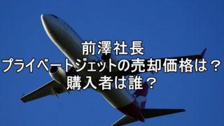 前澤 プライベートジェット